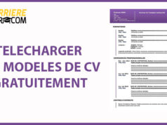 CV-ROSE-Moderne