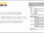 CV-gris-simple